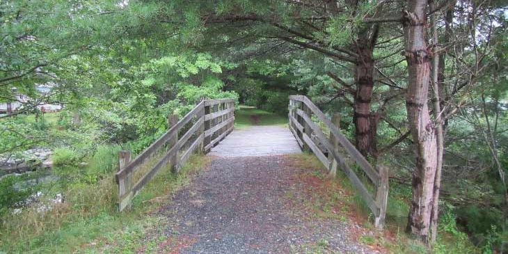Trail Bridge Condition Review & Underwater Inspection